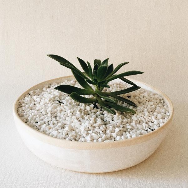 Bowl Sierra Coleção Maidana